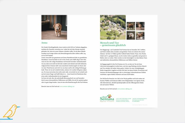 """Blick ins Buch """"Wo steckt Anna?"""" von Sandy Jud über Tierschutz-Hündin Anna"""